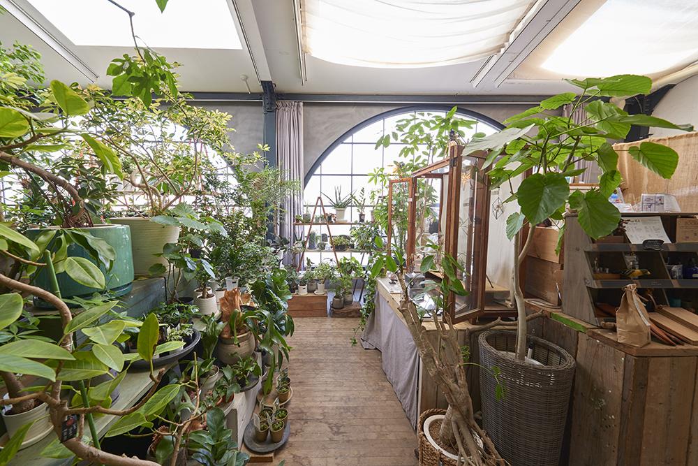 育て方を工夫すれば、どんな植物もイキイキ育つ